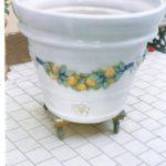 Restaurare la ceramica