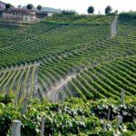 Monferrato: Patrimonio dell'UNESCO