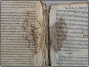 Restauro del libro: glossario e bibliografia