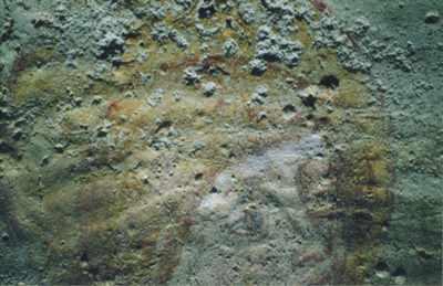 Campagna fotografica a condizione di luce radente: particolare del Santo a cavallo dell'affresco centrale con evidenziazione della presenza diffusa di formazioni saline.